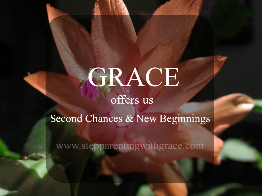 Grace God's Amazing Gift Shows Up in Stepfamilies by Gayla Grace